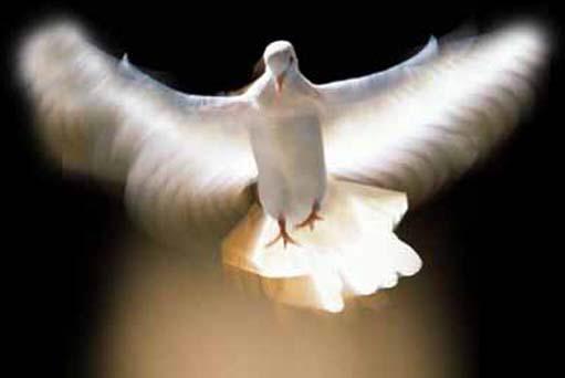 The Holy Spirit and Apostasy